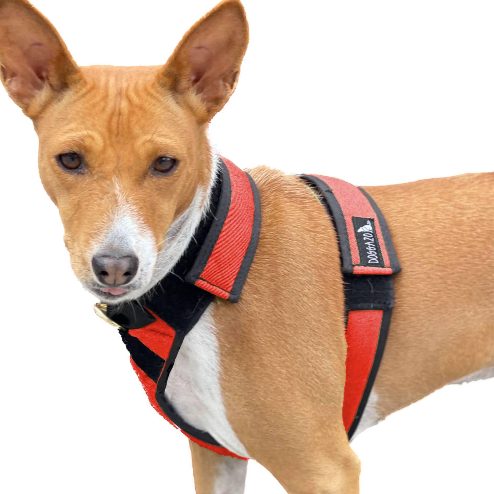 Red Whoa Dog Whoa Harness - side