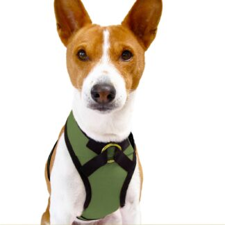Shawn Moss Dog Harness Front