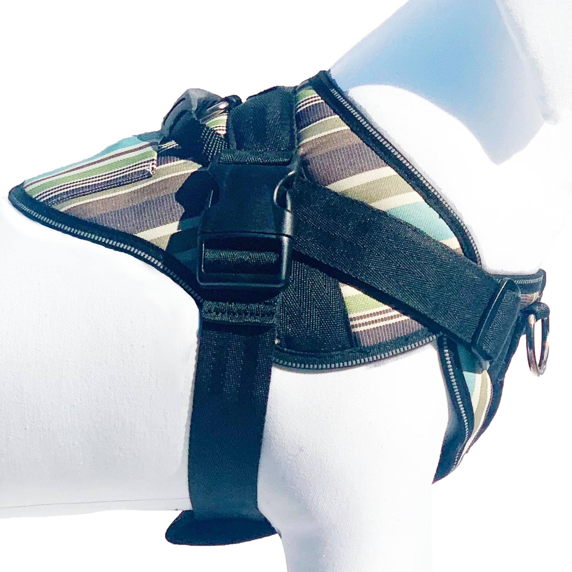 Blue Stripe Upfront Harness Side